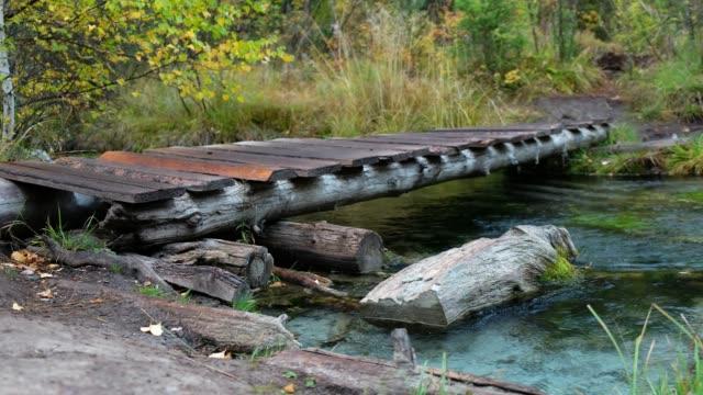 雨の日にアルタイ山脈で青い間欠泉湖付近の森林クリークの小さな木製遊歩道橋 ビデオ