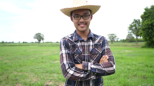 Smart Asian young male farmer in an organic agricultural field - video