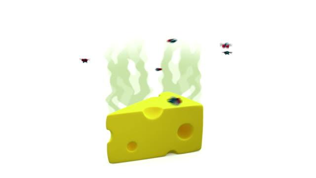 vídeos de stock e filmes b-roll de smelly cheese with flies. 3d animation in cartoon style, alpha channel, loopable - cheiro desagradável
