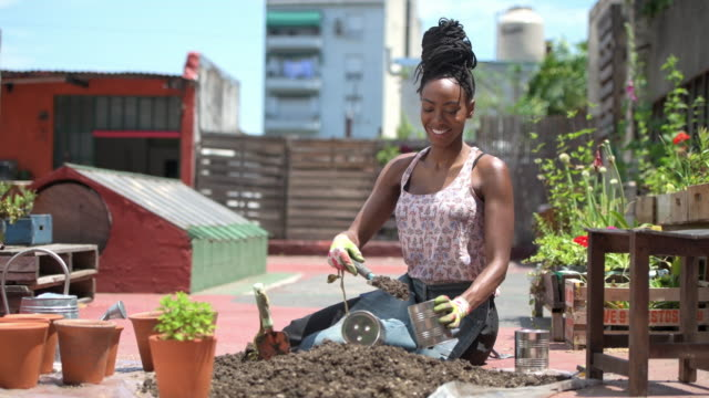 Smiling African Gardener Filling Can With Soil for Planting Young African female community member in late 20s filling cans with soil in roof garden and looking at camera. potted plant stock videos & royalty-free footage