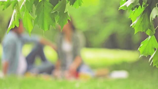 公園でのピクニックにリラックスした一日を過ごす愛のカップルを笑っています。 - ピクニック点の映像素材/bロール