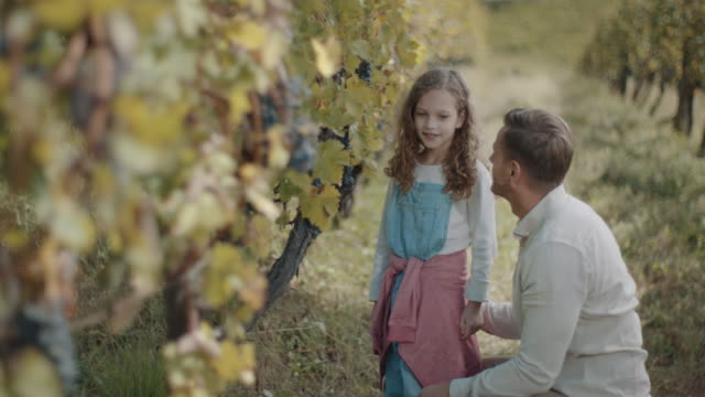 vídeos de stock e filmes b-roll de smiling father and daughter in vineyard - uva shiraz