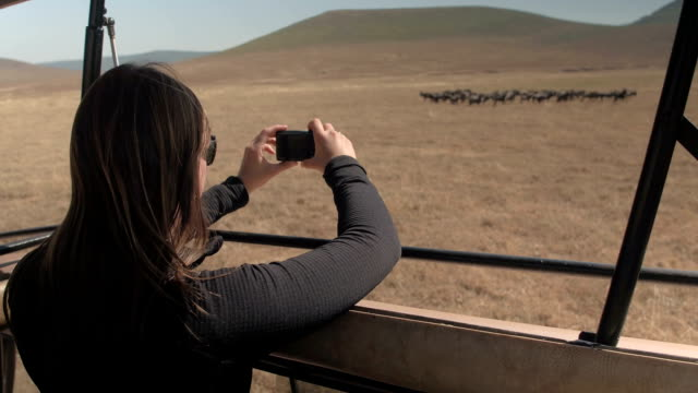 CLOSE UP: Smiling girl photographing game animals in herd in African savannah
