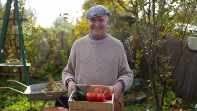 gülümseyen erkek bahçıvan taze sebze sandık ile poz - bahçe ekipmanları stok videoları ve detay görüntü çekimi
