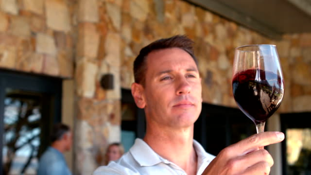 Smiling man examining red wine in slow motion video