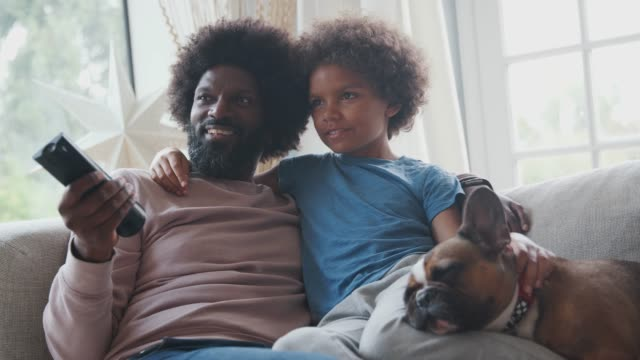 Smiling middle aged black father and pre teen son reclining on sofa together watching TV with their pet dog, dad holding remote control, low angle, close up Smiling middle aged black father and pre teen son reclining on sofa together watching TV with their pet dog, dad holding remote control, low angle, close up watching tv stock videos & royalty-free footage