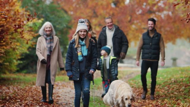 lächelnde mehrgenerationenfamilie mit hund auf dem weg durch die herbstlandschaft gemeinsam - hundesitter stock-videos und b-roll-filmmaterial