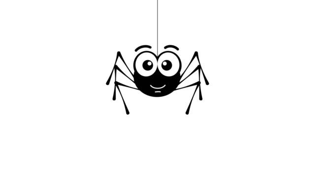 leende liten spindel. - spindel arachnid bildbanksvideor och videomaterial från bakom kulisserna