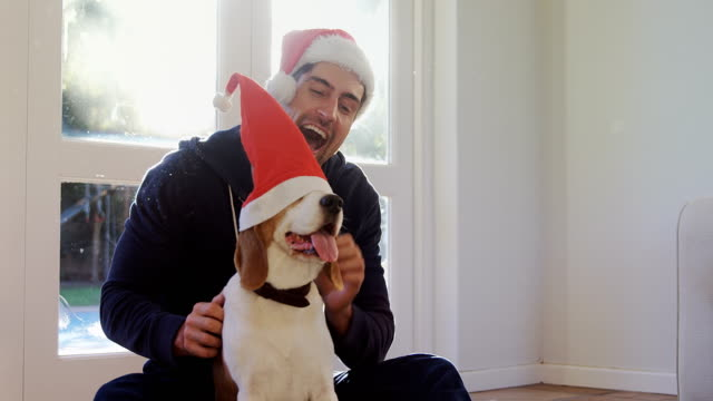 smiling young man putting santa cap on his pet dog 4k 4k - cappello video stock e b–roll