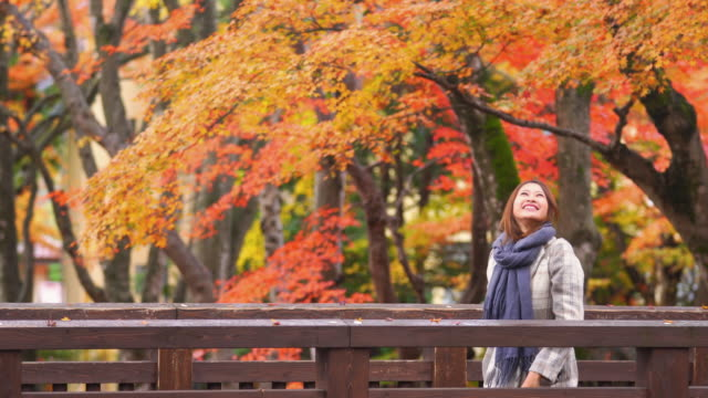 4K Smiling young woman tourist standing on Japanese wooden bridge and enjoy looking at beautiful maple tree with falling red maple leaves during autumn in Japan. Japan travel and season change concept