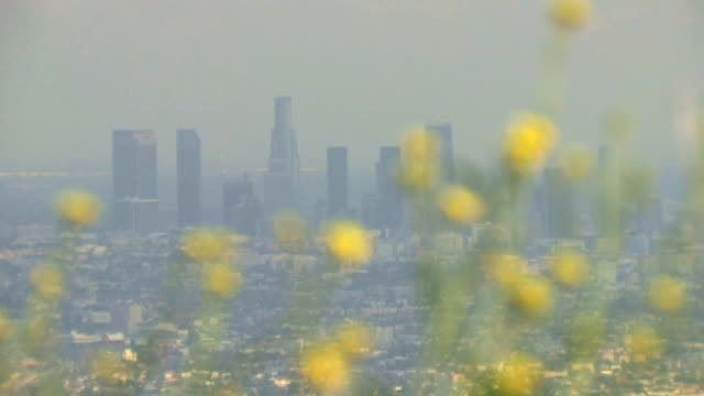 Smoggy Skyline video