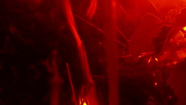 vídeos de stock e filmes b-roll de smoke comes from slowly smoldering on fire dry grass in the dark closeup - inflamável