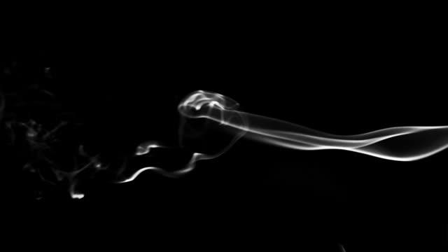 fumo su sfondo nero - sigaro video stock e b–roll