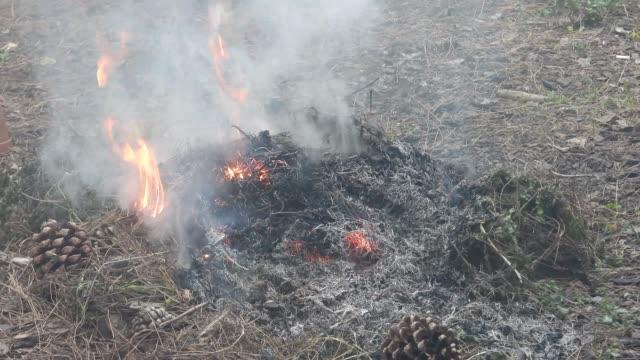 Smokey Grass Burning
