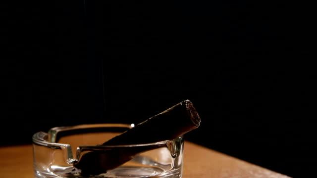 sigara puro tablası - puro stok videoları ve detay görüntü çekimi