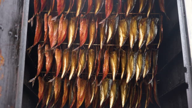 Smoking fish filets hanging side by side in a smoker. Cold smoked mackerel pieces for sale in fish market Smoking fish filets hanging side by side in a smoker. Cold smoked mackerel pieces for sale in fish market smokehouse stock videos & royalty-free footage