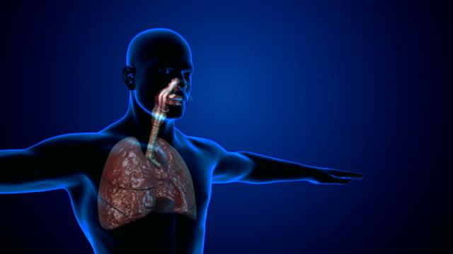 Smoking lungs damage Human lungs degradation or damage while smoking lung stock videos & royalty-free footage