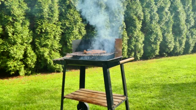 Smoking old-fashioned grill, barbecue in the green garden Smoking old-fashioned, rustical grill, barbecue in the green garden during beautiful, warm day barbecue grill stock videos & royalty-free footage
