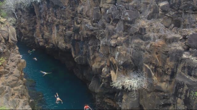 vídeos y material grabado en eventos de stock de snorkeling en galápagos - tubo
