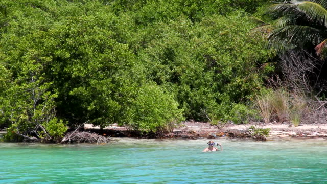 Snorkeling at Remote Destination