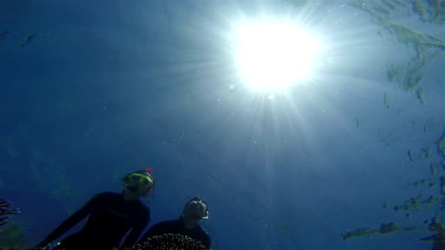 Snorkeling Couple, View from below. video