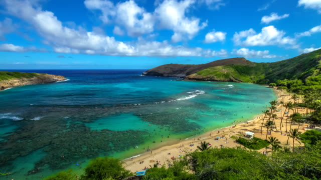 Snorkeling in Hanauma Bay Aerial view time lapse with moving clouds above the beach with coral reef in famous Hanauma Bay Nature Preserve, Oahu island, Hawaii, United States. Summer time leisure and water sports recreation. oahu stock videos & royalty-free footage