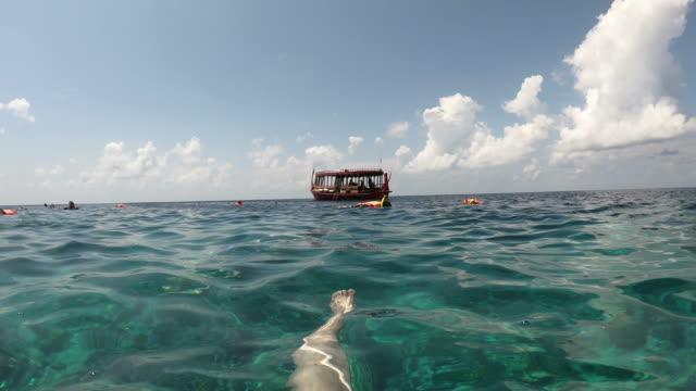 snorkeling in oceean sea - vídeo
