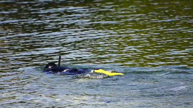 snorkeling persona con maschera undeerwater e suite - sky diving video stock e b–roll