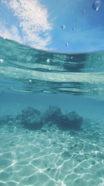snorkeling point of view in tropical maldives water - vertical format video stock videos and b-roll footage