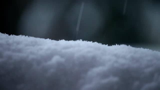 Snow Accumulation Time Lapse video