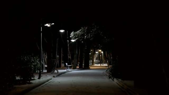 Snow at night video