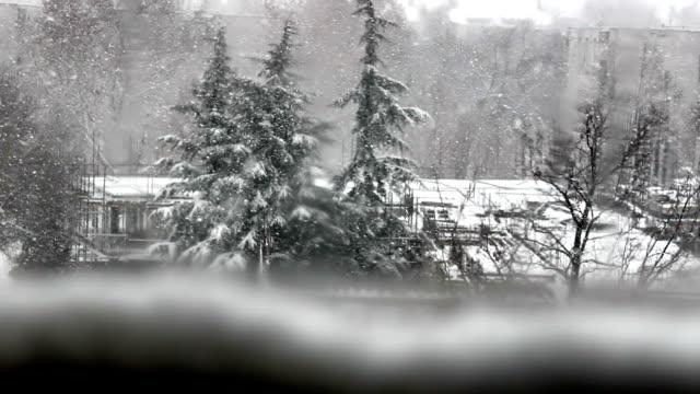 Snow blizzard video