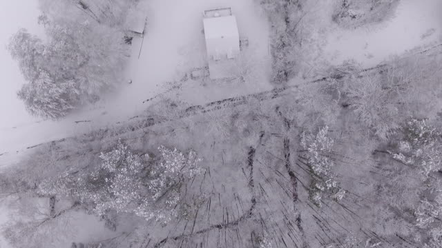 snow covered view of forest from aerial drone snow covered view of forest from aerial drone dow jones industrial average stock videos & royalty-free footage