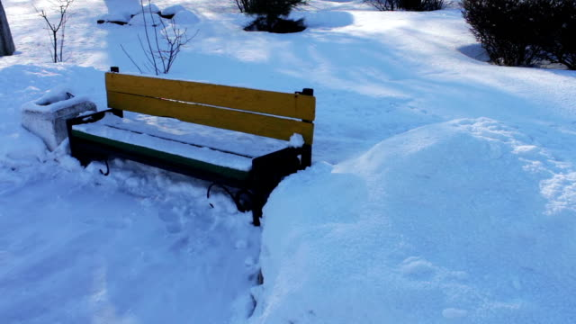 Snow covered walkway of park. video