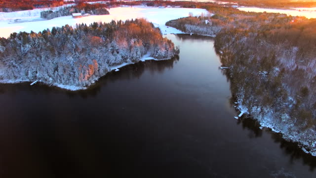 Snow covered woods around icy lake by light of dawn video