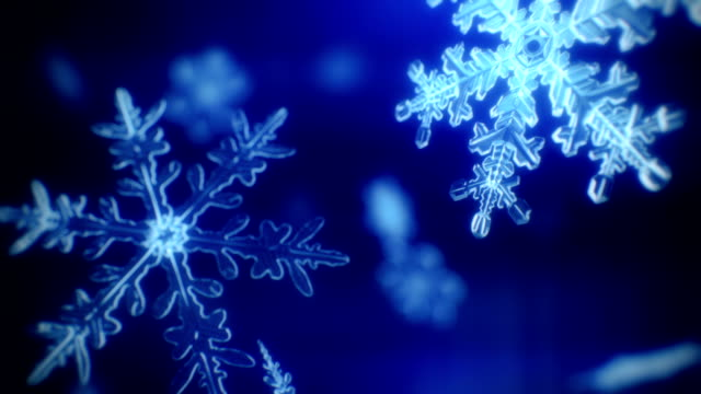 Snow crystals falling calmly - loopable. video