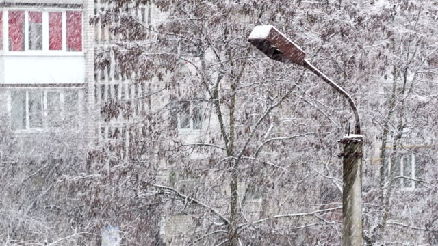 Snow cyclone over the city. Lamppost and trees covered with snow. video