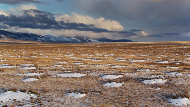 schneeverwehungen und wieder auftauchendes gras in feldern im frühling - drohnen-schuss - vier jahreszeiten stock-videos und b-roll-filmmaterial