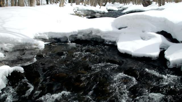 snö faller hokkaido forest brook - akan nationalpark bildbanksvideor och videomaterial från bakom kulisserna