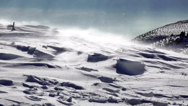 snö kastbyar blåser över en arktiska landskapet, uhd lager video - djupsnö bildbanksvideor och videomaterial från bakom kulisserna