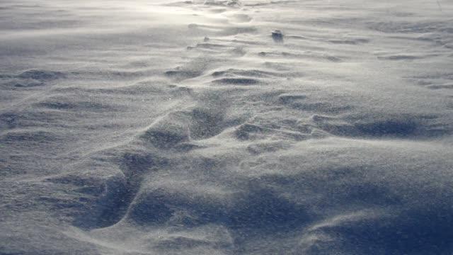 snö blåser på vintern - snöstorm bildbanksvideor och videomaterial från bakom kulisserna