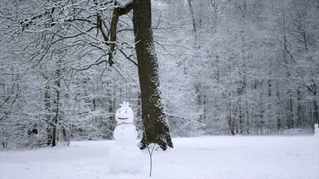 vídeos y material grabado en eventos de stock de la nieve está cayendo en el bosque de invierno. el hombre de nieve se encuentra en un glade del bosque. - snowman