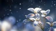 istock Snow Landscape 135821257