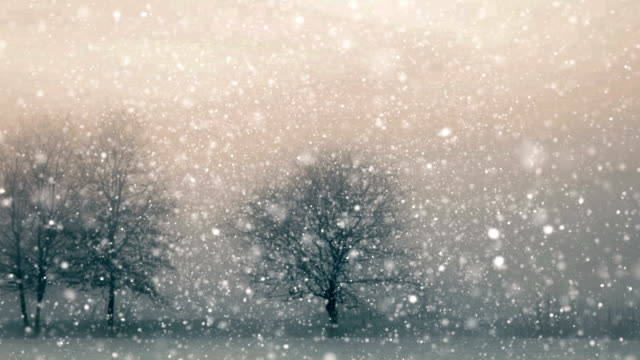 snow loopable - snowflake background stock videos & royalty-free footage