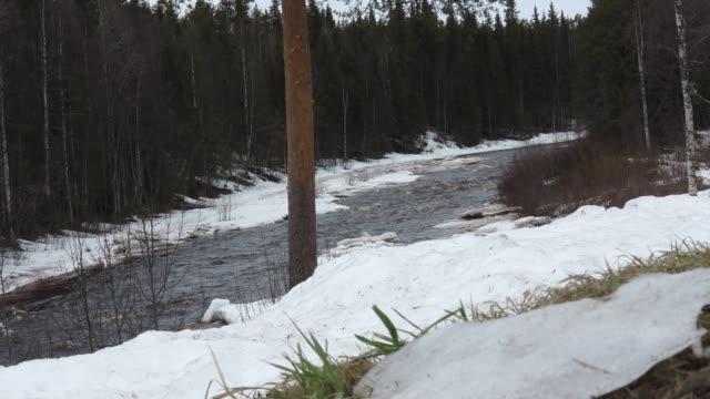 snön smälter - norrbotten bildbanksvideor och videomaterial från bakom kulisserna