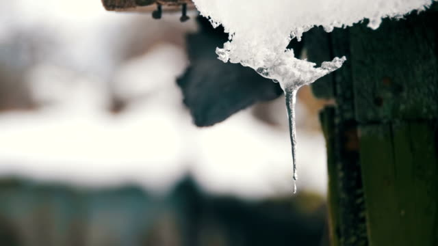 snö smälter från taken och droppar ner på våren. slow motion (långsam) - icicle bildbanksvideor och videomaterial från bakom kulisserna