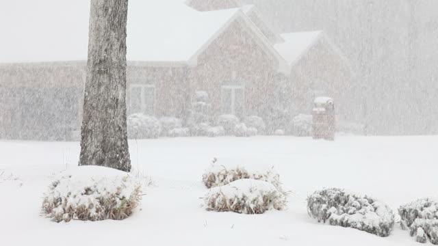 Snow neighborhood video