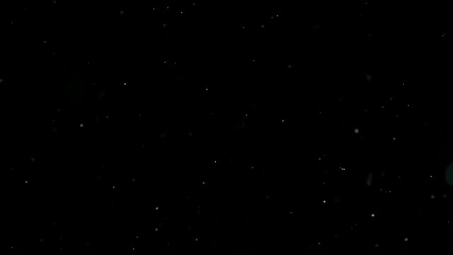 Snow Particles Falling From the Night Sky Blizzard, snow falling down in front of the lens, largely densed particle stock videos & royalty-free footage