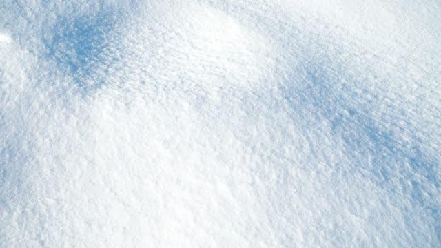 snö skytte, på vintern.skytte i januari. bakgrund i form av snö. - djupsnö bildbanksvideor och videomaterial från bakom kulisserna