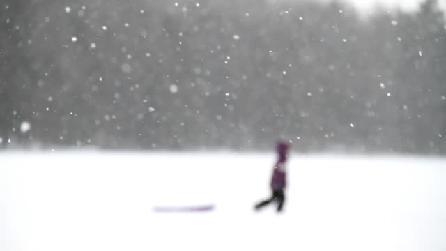 snow silhouette 2 video